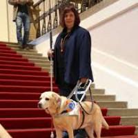 Blindenführhund SOny mit Frauchen Sibylle Brandt im Bayerischen Landtag